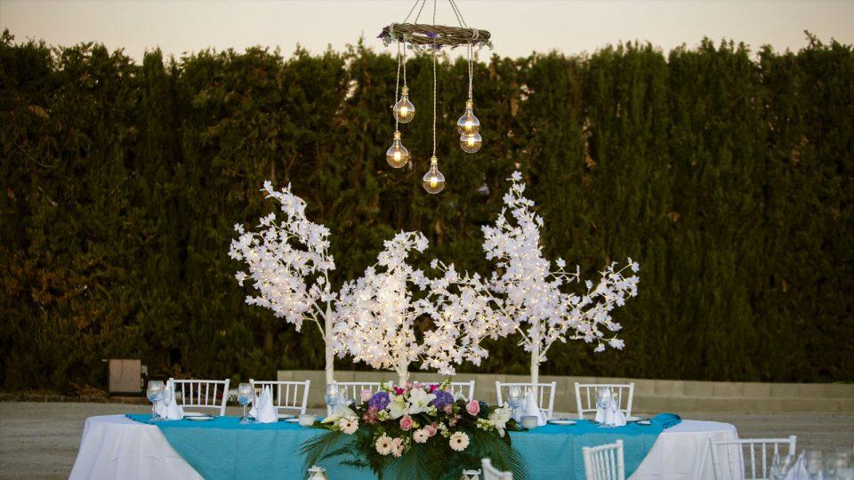 Iluminación de bodas y celebraciones (Wedding Area)